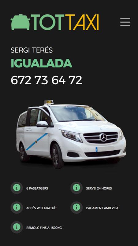 tot-taxi-movil-1